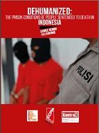 Indonesia report analyse